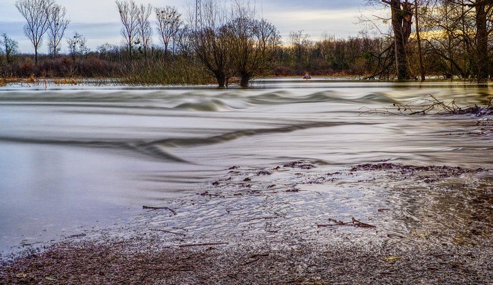 FisherInsight flood pg 1